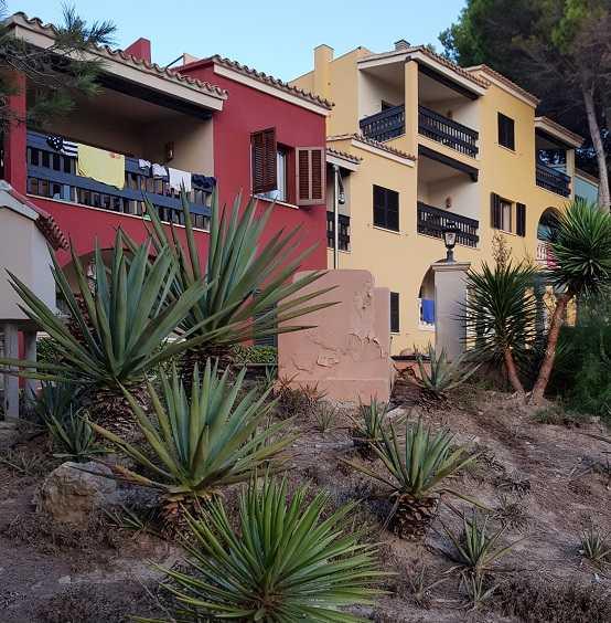 Ferienwohnungen-des-Hapimag-Paguera-rot-und-gelb-mit-Pflanzen