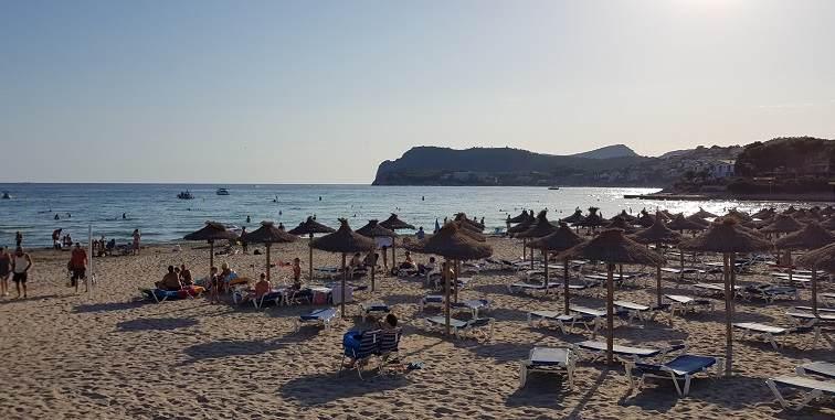 Schirme-und-Liegen-am-Playa-Tora-Paguera