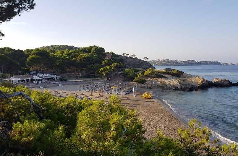 Strand-Romana-Blick-vom-Lido-Park-Paguera